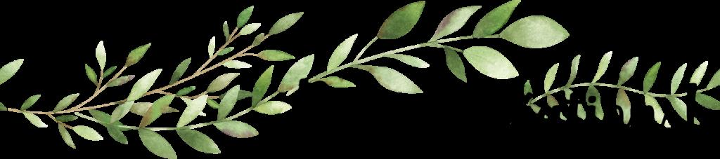 Bonne création (avec bordure de feuilles)